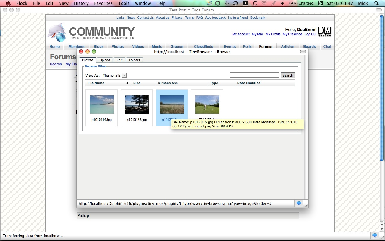 DeeEmm TinyMCE Media Browser MOD :: BoonEx Unity Forums